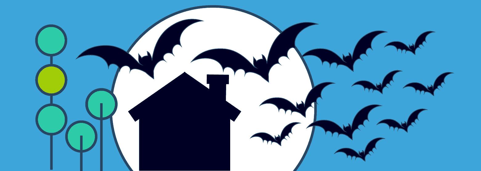 Fledermäuse und Haus